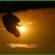 HIKMAH PAGI : Mendahulukan Ridho Allah