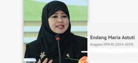 Endang Maria Astuti Anggota DPR RI 2019 – 2014